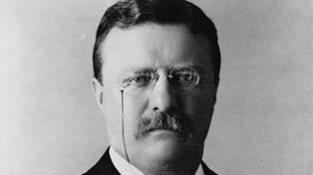 the early life and short military career of theodore roosevelt Roosevelt came from a wealthy new york family, but he didn't take an easy path through life born on october 27, 1858 in manhattan, roosevelt survived the tragedy of losing his wife and his own mother to illness on the same day in 1884, an assassination attempt in 1912, and an extremely dangerous military charge in cuba in 1898.